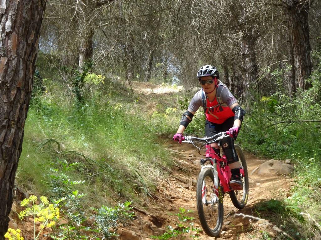 Coín Woods leisurely bike ride