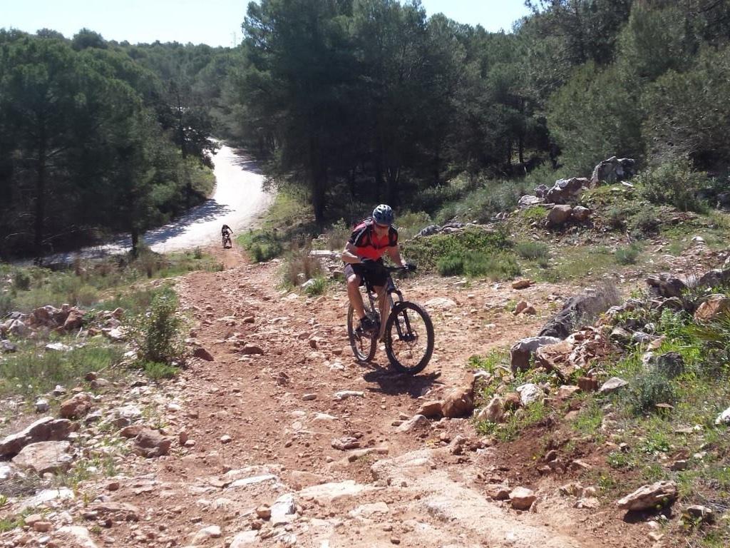 Coín Woods steep climb challenge