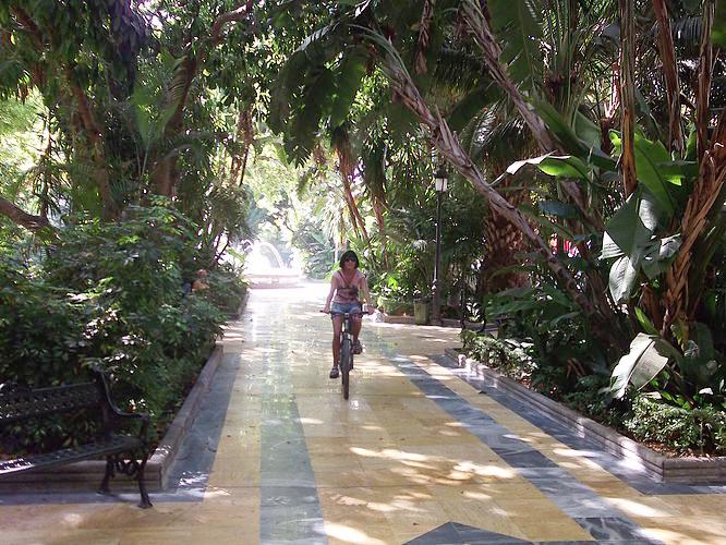 Puerto Banus shady botanical park in Marbella