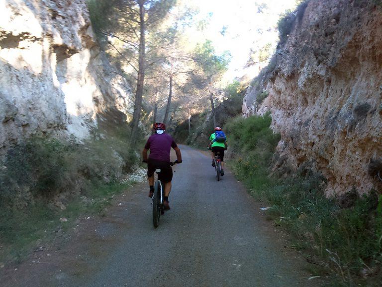 Via Verde de la Campiña shady dirt roads