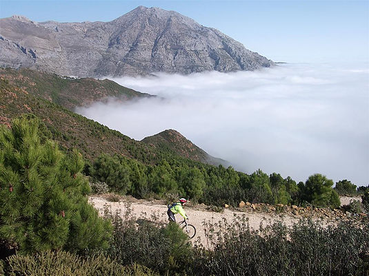 Serranía de Ronda riding down fire road over the mist with mountain background
