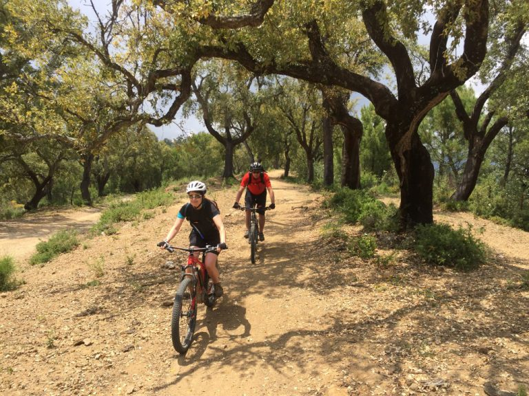 White Village Tour of Andalucia riding in shade under trees