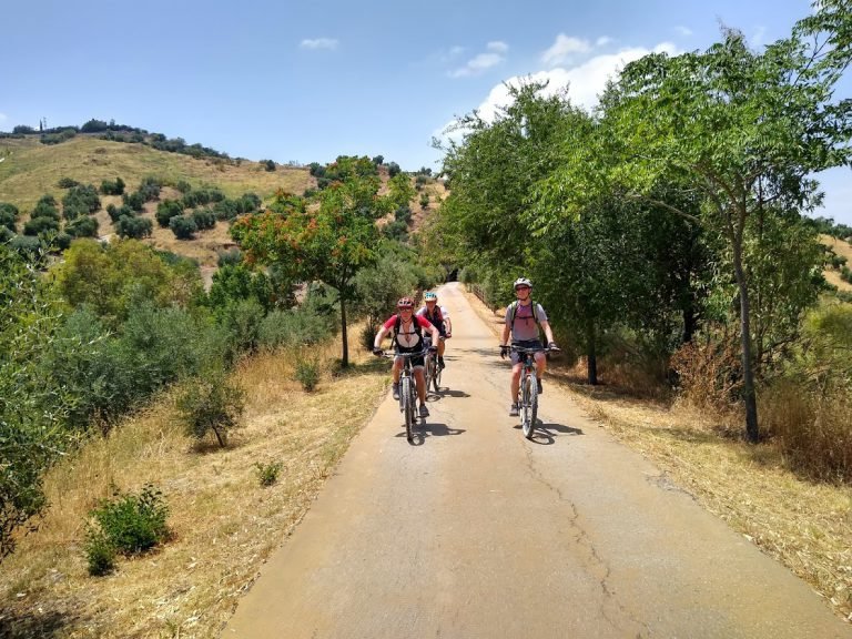 White Village Tour of Andalucia group riding between trees