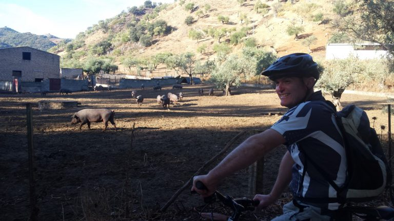 Algodonales posing with pigs