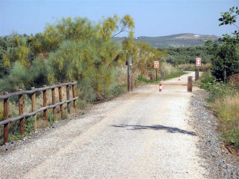Via Verde del Aceite dirt roads between villages