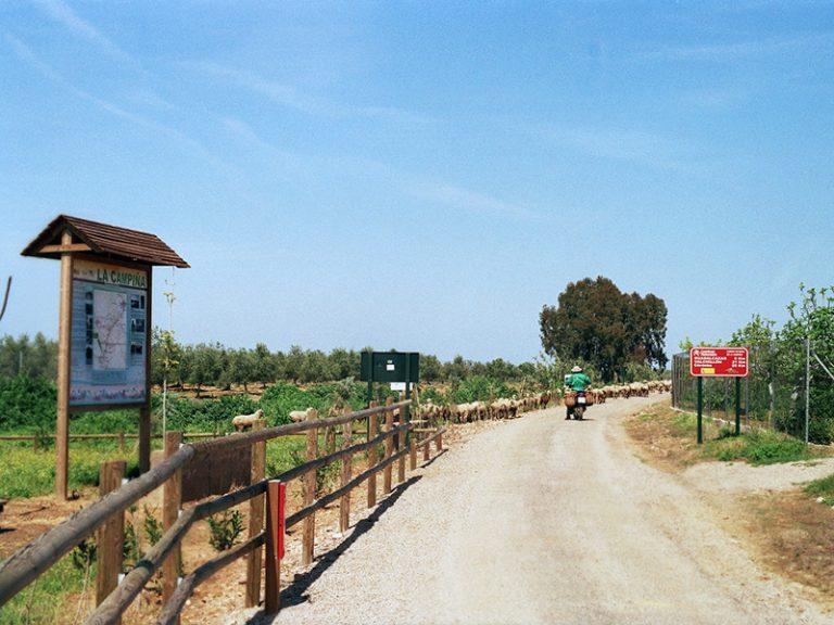Via Verde de la Campiña trailhead