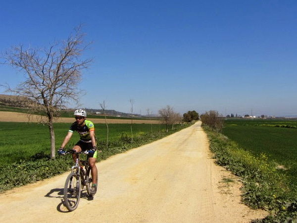 Via Verde de la Campiña wide countryside back roads