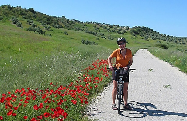 Via Verde de la Campiña beautiful green scenery on back roads