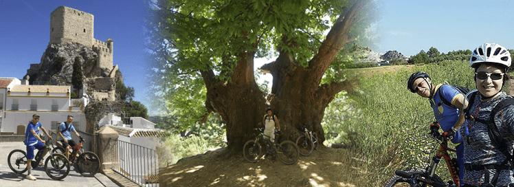 White Village Tour of Andalucia
