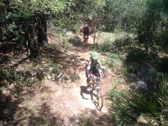 Three Amigos steep forest section on Top Amigo