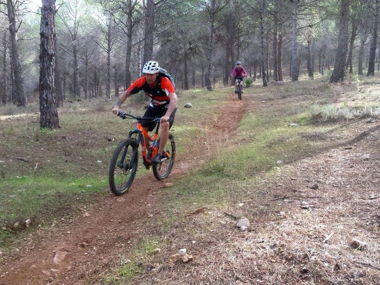 Alhaurin Woods wide open singletrack