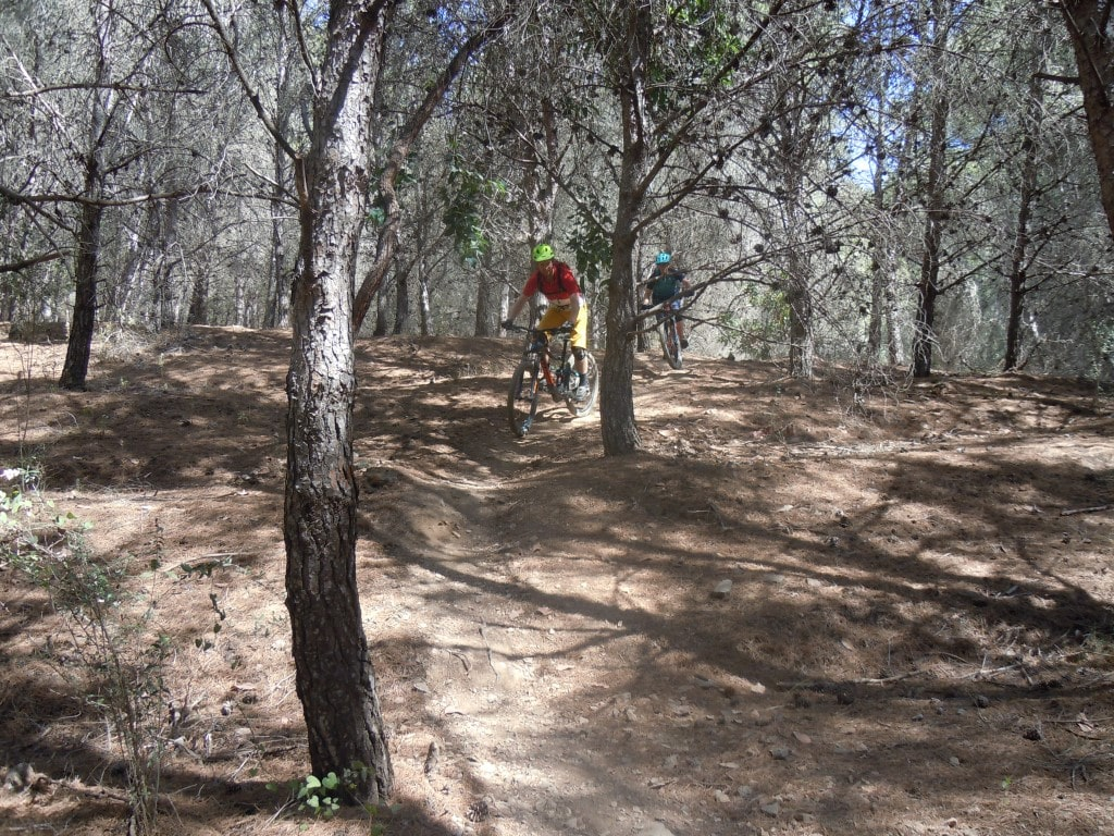 Malaga Bike Park smooth forest section