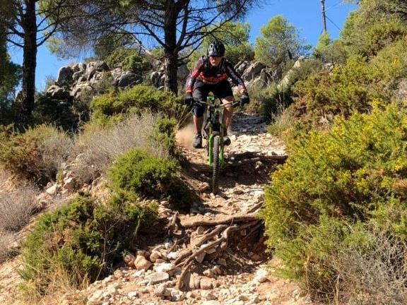 Full Telecom rider over big roots before road